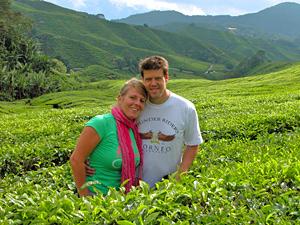 Die Teefelder in den Cameron Highlands