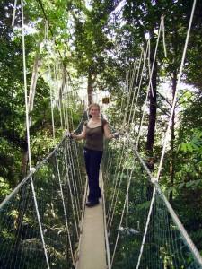 Canopy Walk während Ihrer Malaysia Touren