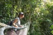 Dschungel, Tee und Strand – Quer durch Malaysia