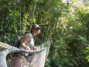 Tief im Dschungel vom Taman Negara Nationalpark
