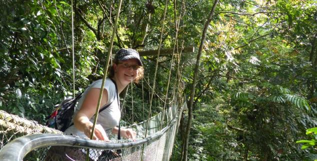 Während Ihrer Individualreise durch Malaysia besuchen Sie den Taman Negara Nationalpark