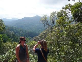 Ausblick auf den Dschungel auf Ihrer Wanderung durch den Taman Negara Nationalpark