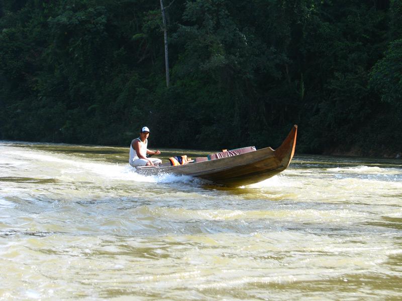 Kleine Bootstour entlang des Dschungels