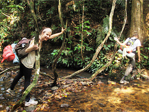 Trekking Tour durch den Taman Negara Nationalpark