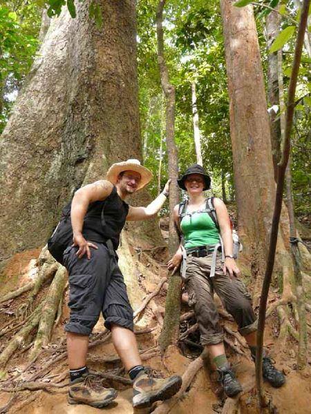 Mit einem Guide den Dschungel noch näher erkunden