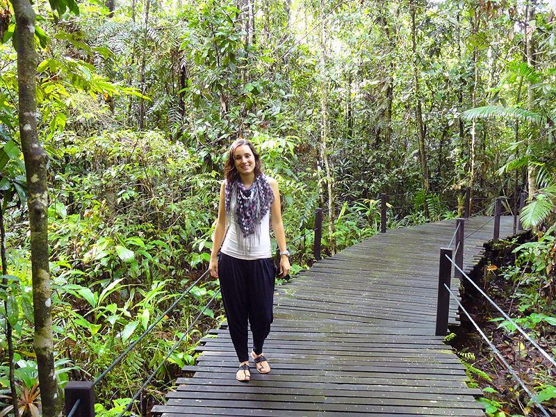 Dschungel in Abai