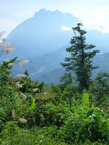 Aussicht auf den Mount Kinabalu