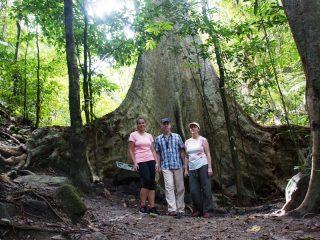 Touristen im Belum Regenwald