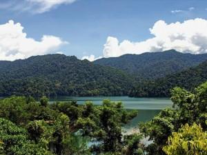 Unterwegs im unbekannten Belum Regenwald