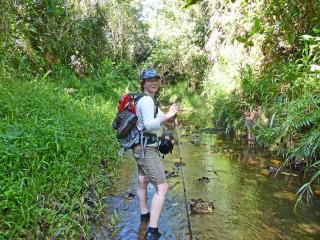 Wanderung im Flussbett von Borneo