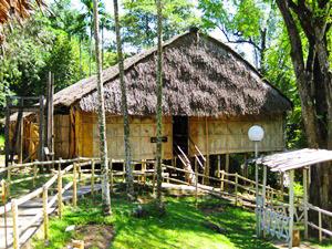 Landschaft bei Kota Kinabalu bei Ihren Rundreisen Borneo