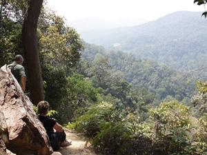 Dschungelausblick im Taman Negara