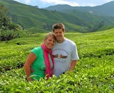 Lust auf Tee in den Cameron Highlands