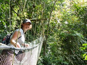 Canopy Walk im Dschungel Malaysias