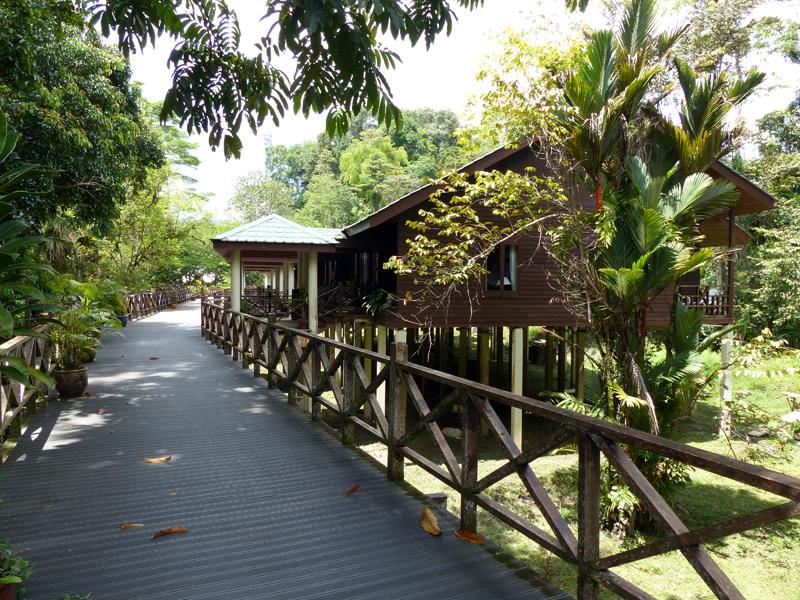 Ihre Komfort Unterkunft im Mulu Nationalpark