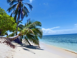 Tropischer Sandstrand auf der Turtel Island Selingan