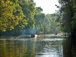 Mit dem Boot auf Tiersafari im Borneo Dschungel