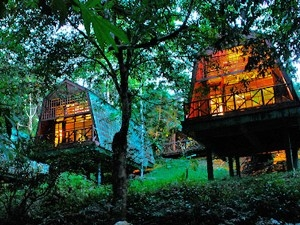 Lodge in Borneo Regenwald