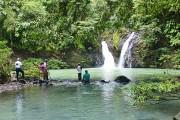 Natur pur – Quer durch Borneos Regenwald