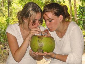 touristen-kokosnuss-trinken