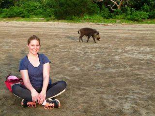Erleben Sie die Tierwelt im Bako Nationalpark hautnah
