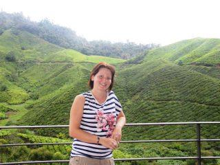 Blick auf die Teeplantagen