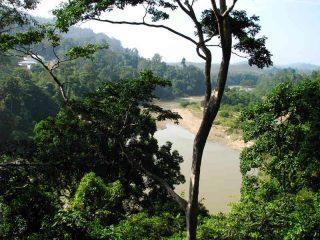 Der Nationalpark liegt direkt am Fluss