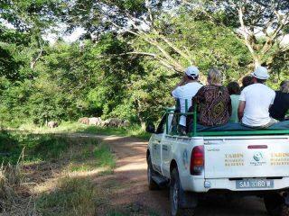 Jeepfahrt durch den Tabin Nationalpark