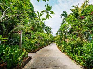 Tropischer Garten auf Rawa Island