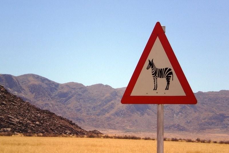 Achtung-Zebra-Schild