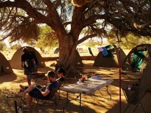 Join-in-Lager-Reisende