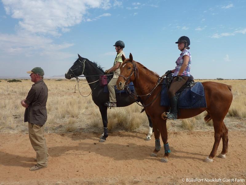 Namibia Sossusvlei Ausritt Pferde Büllsport