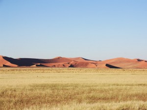 Dünenlandschaft rund um das Sossusvlei