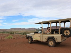 Damaraland Nashörner Rhinotracking Namibia Safari