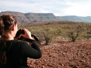 Namibia - Reisende hält Ausschau nach Nashörnern im Damaraland - Namibia Highlights