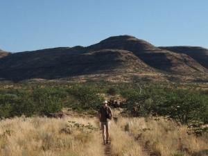 Namibia - Reisender in der Natur im Damaraland - Rundreise Namibia, Botswana und Victoria Falls