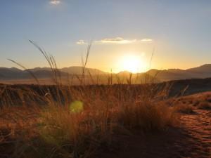 Namibia - Dünen in der Namib Wüste - Etosha