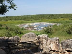 Namibia - Blick auf ein Wasserloch im Etosha Nationalpark
