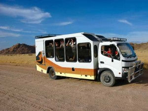 Unternehmen Sie ausgedehnte Pirschfahrten im Safaribus