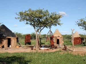 Kaokoveld Besuch Himba-Dorf Guide