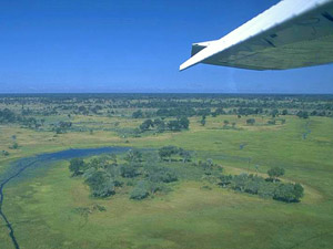 Start Ihrer Fly-In-Safari im Okavango Delta