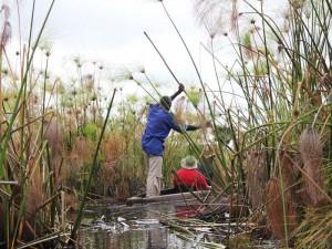 Botswana - Mokorofahrt auf dem Okavango Delta - Rundreise Namibia, Botswana und Victoria Falls
