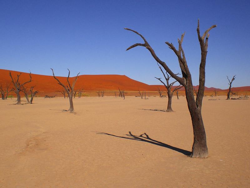Namibia - Sanddünen vom Sossusvlei