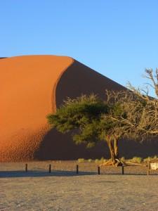 Blick auf die Sanddünen des Sossusvlei