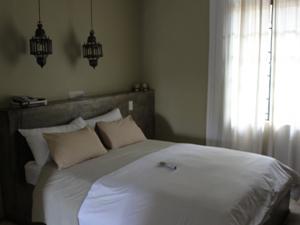Gemütliches Zimmer der Komfort-Unterkunft in Windhoek