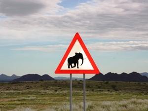 Vorsicht Elefanten in Namibia