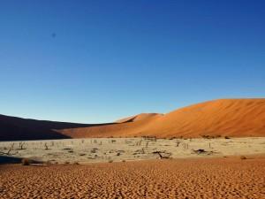 Namibia Deadvlei von Windhoek nach Kapstadt