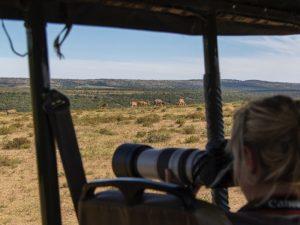 Namibia - Etosha Nationalpark - Reisende auf Safari - Rundreise Namibia Botswana