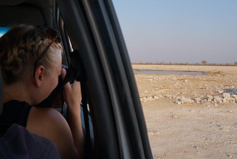 Tierbeobachtung im Etosha Nationalpark