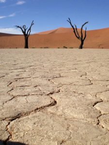 Namibia - Deadvlei - Von Windhoek nach Kapstadt
